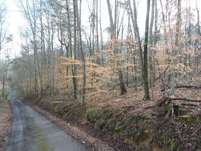 Union County Residential Lots & Land For Sale: Lot 39 Summers Rd
