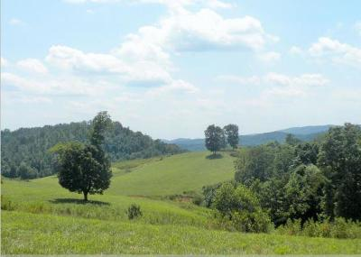 Anderson County, Campbell County, Claiborne County, Grainger County, Union County Residential Lots & Land For Sale: 1657 Sulphur Springs Rd