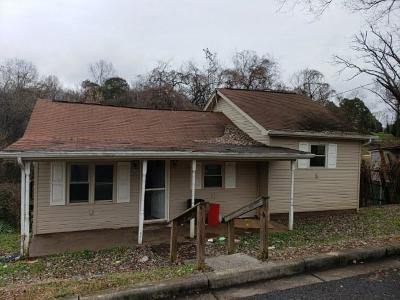 Loudon Single Family Home For Sale: 1225 Main St