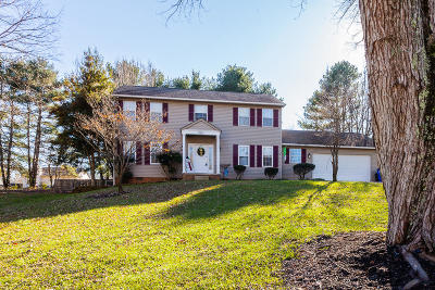 Knoxville Single Family Home For Sale: 9314 Collingwood Rd