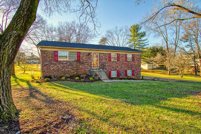 Maryville Single Family Home For Sale: 311 Dell Rd