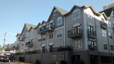 Knox County Condo/Townhouse For Sale: 1801 Lake Ave #Apt 106