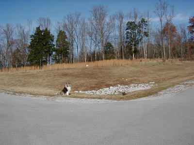 Residential Lots & Land For Sale: 100 Roaming Fawn Drive