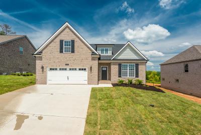 Knoxville Single Family Home For Sale: 2337 Hickory Crest Lane