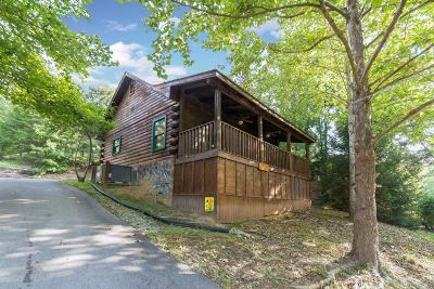 Sevierville Single Family Home For Sale: 161 Smoky Mtn Way