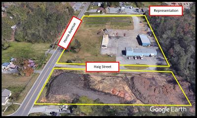 Blount County Commercial For Sale: 704 Haig St