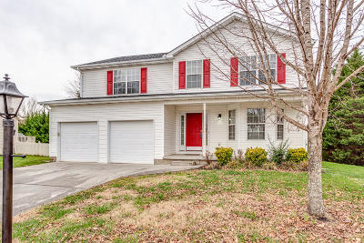 Knoxville Single Family Home For Sale: 7049 Yellow Oak Lane
