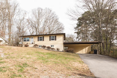 Knoxville Single Family Home For Sale: 1744 Piney Grove Church Rd