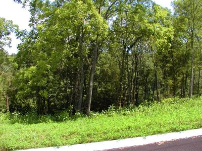 Hamblen County Residential Lots & Land For Sale: 1984 Turners Landing Rd