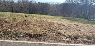 Knoxville Residential Lots & Land For Sale: 424 W Ford Valley Lot 1 Rd