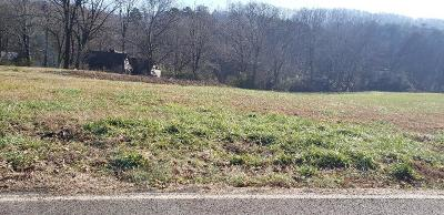 Knoxville Residential Lots & Land For Sale: 424 W Ford Valley Lot 2 Rd