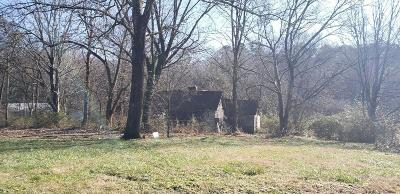 Knoxville Residential Lots & Land For Sale: 424 W Ford Valley Lot 5 Rd