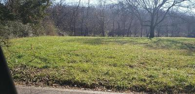 Knoxville Residential Lots & Land For Sale: 424 W Ford Valley Lot 6 Rd