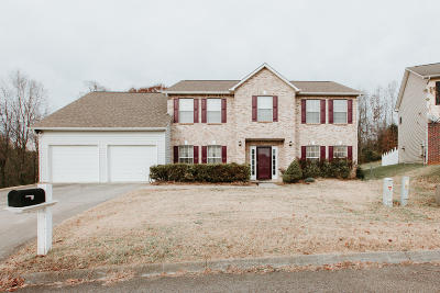 Knoxville Single Family Home For Sale: 714 Fox Landing Lane