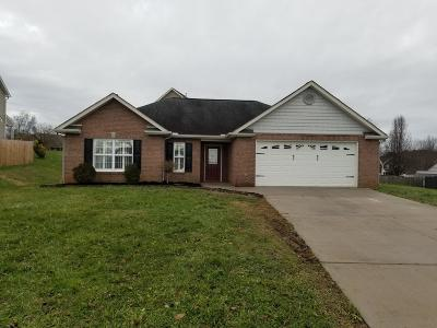 Knox County Single Family Home For Sale: 5311 Stricter Lane
