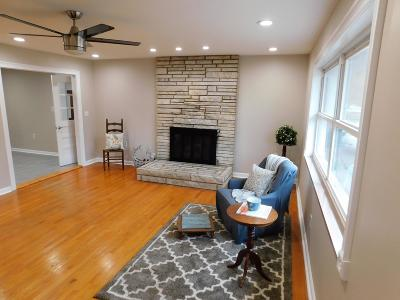 Pigeon Forge Single Family Home For Sale: 203 Hillis Drive