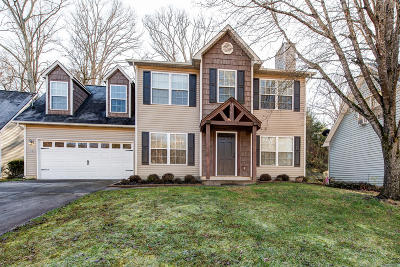 Knoxville Single Family Home For Sale: 1417 Randall Park Drive