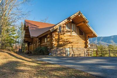 Gatlinburg Single Family Home For Sale: 427 Coyote Rd
