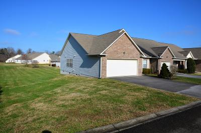 Knoxville Single Family Home For Sale: 419 Crystal Way
