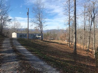 Caryville, Jacksboro, Lafollette, Rocky Top, Speedwell, Maynardville, Andersonville Single Family Home For Sale: 698 River Rd