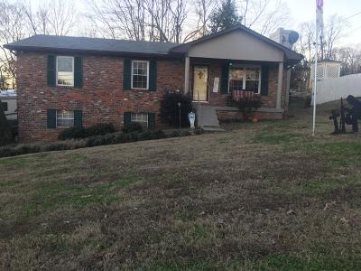 Knoxville Single Family Home For Sale: 10952 Dundee Rd