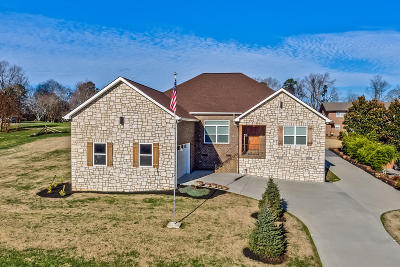 Maryville Single Family Home For Sale: 231 S Panoscenic Drive