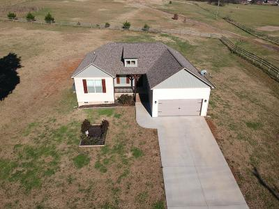 Sevierville Single Family Home For Sale: 1963 Rays Gap Rd