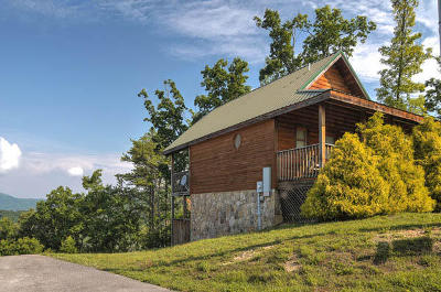 Sevierville Single Family Home For Sale: 2551 Raccoon Hollow Way