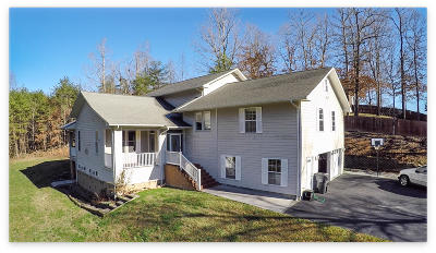 Pigeon Forge Single Family Home For Sale: 801 Kings Hills Blvd