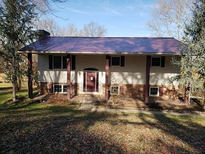 Blount County, Loudon County, Monroe County Single Family Home For Sale: 1358 W Hunt Rd