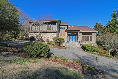 Knoxville Single Family Home For Sale: 10933 Farragut Hills Blvd