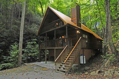 Gatlinburg Single Family Home For Sale: 403 Wiley Oakley Drive