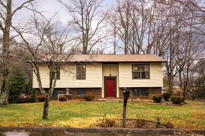 Maryville Single Family Home For Sale: 136 Chestnut Lane