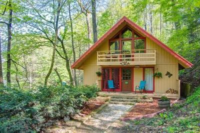 Gatlinburg Single Family Home For Sale: 907 Ski Mountain Rd