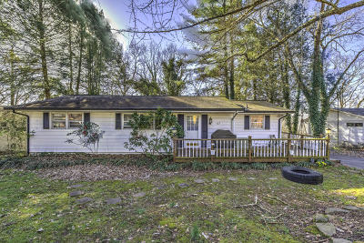 Anderson County Single Family Home For Sale: 127 Indian Lane