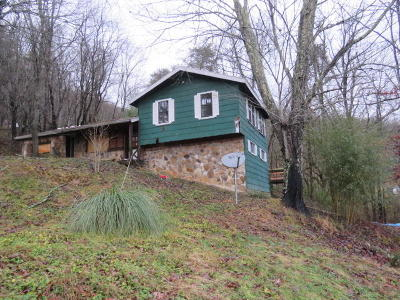 Caryville Single Family Home For Auction: 118 Gold Lane