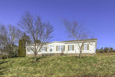 Tazewell Single Family Home For Sale: 109 Dobbs Lane