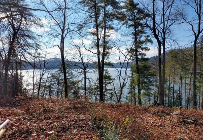 Meigs County, Rhea County, Roane County Residential Lots & Land For Sale: 1318 Whites Creek Rd