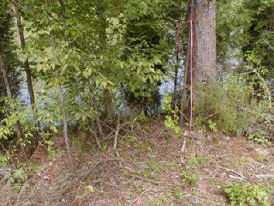 Meigs County, Rhea County, Roane County Residential Lots & Land For Sale: Lot 61 Blue Heron Drive