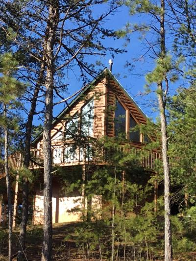 Claiborne County, Cocke County, Grainger County, Greene County, Hamblen County, Hancock County, Hawkins County, Jefferson County, Sevier County, Union County Single Family Home For Sale: 2630 Blanket Mountain Way