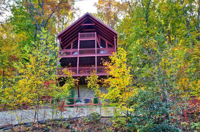 Sevierville Single Family Home For Sale: 1322 Ridgefield Drive