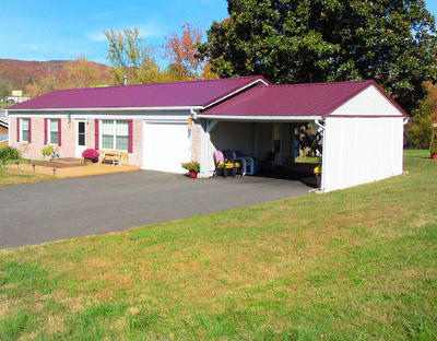 Campbell County Single Family Home For Sale: 135 Sharp And Perkins Rd