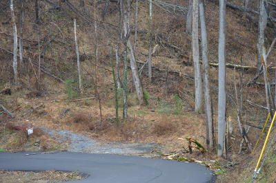 Sevier County Residential Lots & Land For Sale: Woodland Dr Drive