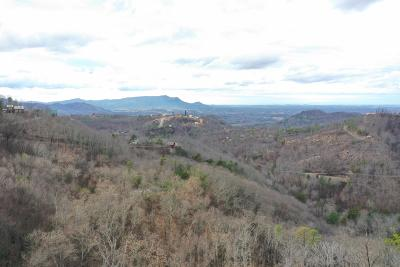 Sevierville Residential Lots & Land For Sale: Windy Lane