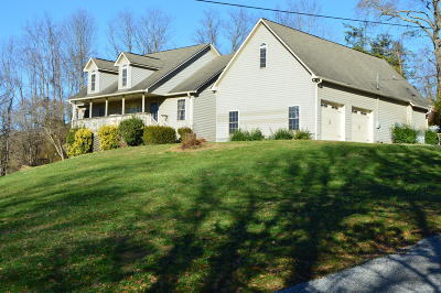 Sevierville Single Family Home For Sale: 3110 Nevils Way