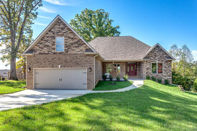 Lenoir City Single Family Home For Sale: 335 Zane Lane