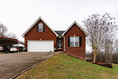 Knoxville Single Family Home For Sale: 3333 George Light Rd