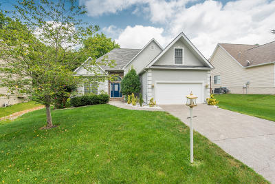 Knoxville Single Family Home For Sale: 2708 Dee Peppers Drive