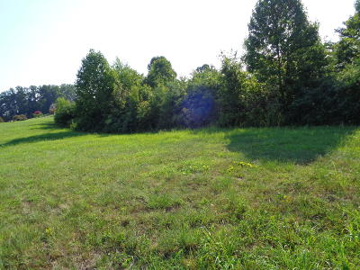Greenback Residential Lots & Land For Sale: 1139 Houston Springs Rd