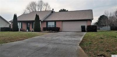 Sevierville Single Family Home For Sale: 1744 Country Meadows Drive